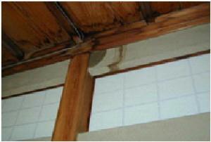 天井から雨漏りが浸み込んだ京壁