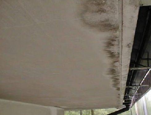 漆喰のかび(屋根からの雨水の垂れによるもの)
