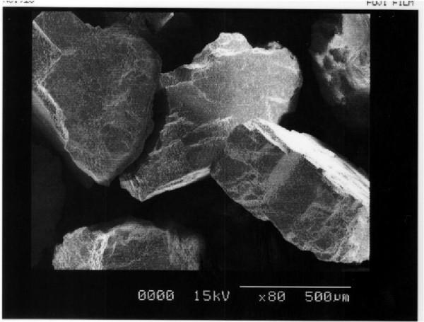 珪砂の電子顕微鏡写真  ×500