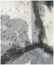 4.モルタル防水処理の状況。モルタル防水の材料はポリマーセメント系塗膜防水材で、エチレン酢酸ビニル合成樹脂エマルジョンと、これを凝固させる無機質粉体からなる硬化材からなるものです。